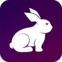 Rabbit VPN – Fast Hotspot & Unlimited Secure Proxy App Download For Android