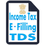 Income Tax TDS (Income Tax Return eFilling)