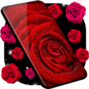 Red Rose Live Wallpaper 🌹 HQ Background Changer App Download For Android