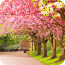 Spring Wallpaper App Download For Android