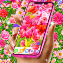 Spring live wallpapers Apk  Download For Android