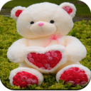 Cute Teddy Bear wallpaper Apk  Download For Android