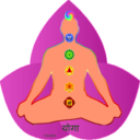 Yoga hindi Apk Latest Version Download For Android