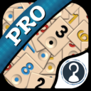 Okey Pro App Latest Version Download For Android and iPhone