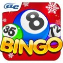AE Bingo: Offline Bingo Games Apk Download For Android and iPhone